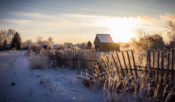 снежная зима красивый пейзаж