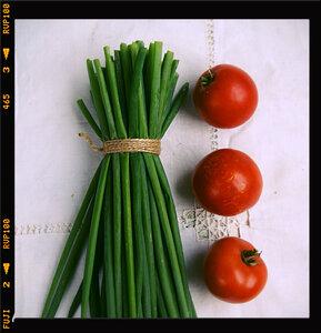 Красно-зеленый этюд