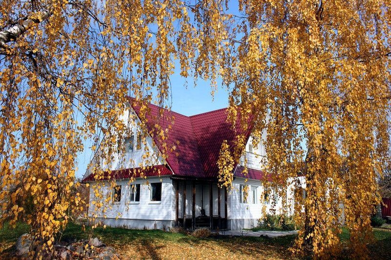 Мой домик в золоте осени.