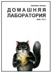 Журнал Домашняя лаборатория №7 2013