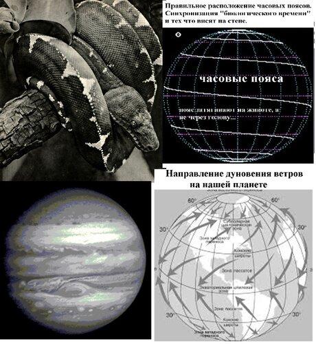 Часовые пояса планеты