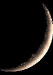 New_Moon_pixelfairy_el (28).png