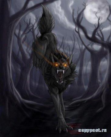 анимации про волков