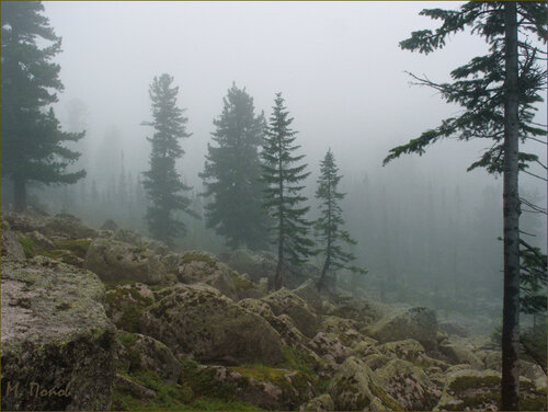 Фотографируем туман