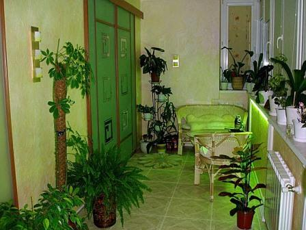 orangereia-na-balkone-16.jpg