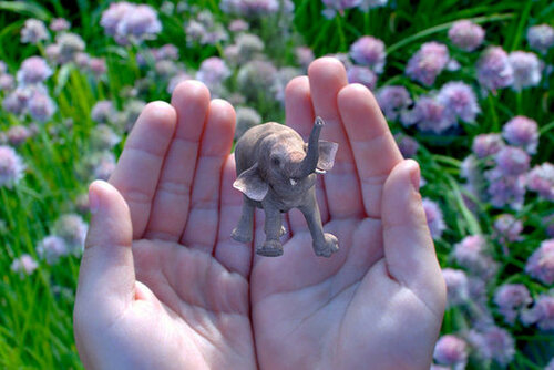 Google инвестировал $542 млн в разработчика 3D-технологий Magic Leap