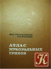 Книга Атлас мукоральных грибов