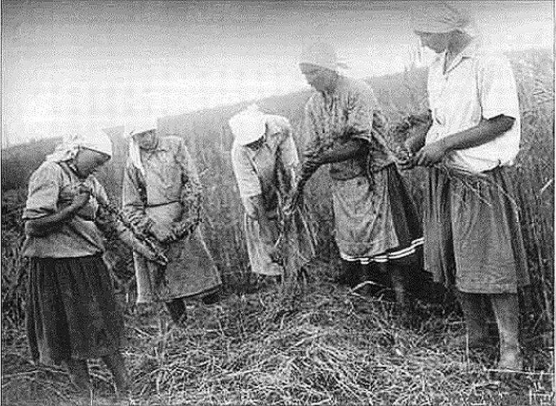 Сельские жители раннего СССР. 039.jpg