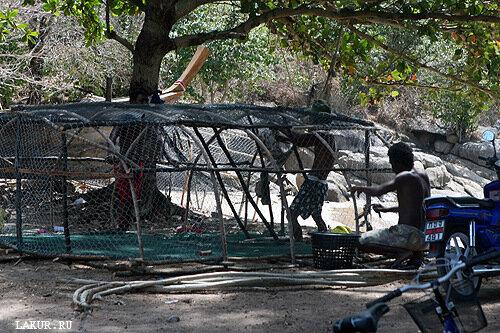 таиланд деревня остров рыьаки