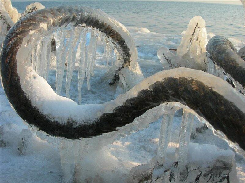 Морской змей