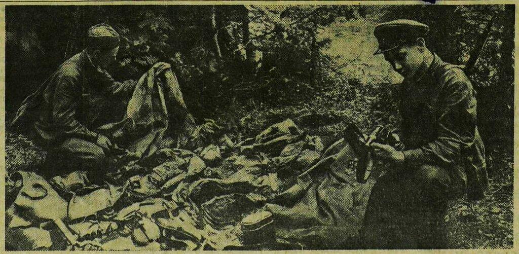 «Красная звезда», 8 июля 1941 года, как русские немцев били, потери немцев на Восточном фронте, красноармеец 1941, красноармеец ВОВ, Красная Армия, смерть немецким оккупантам