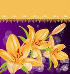 Orange lilies vector cliparts (5) [преобразованный]