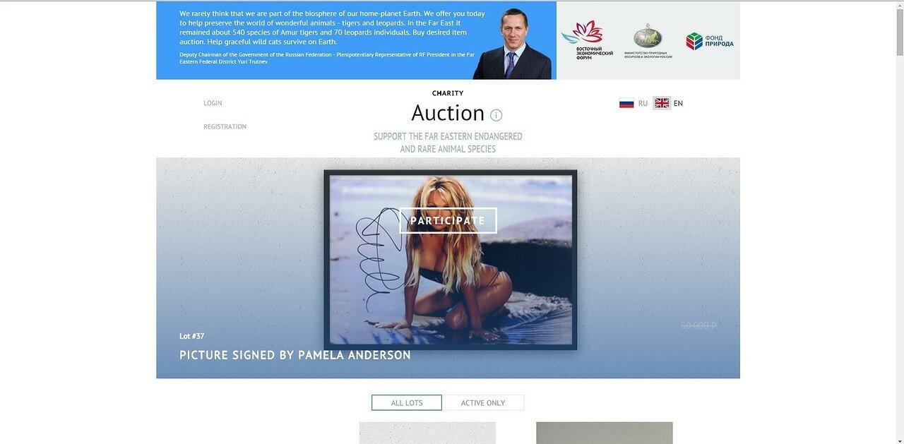 аукцион1.jpg