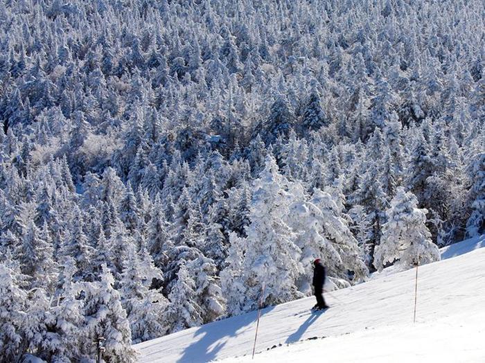 В Вермонте запретили рекламу из за красивых пейзажей штата 0 cb953 151919ff orig