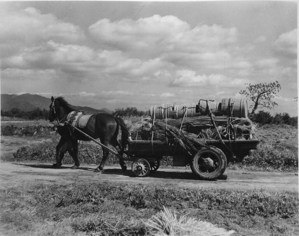 Night Soil Wagon, March 24,1946