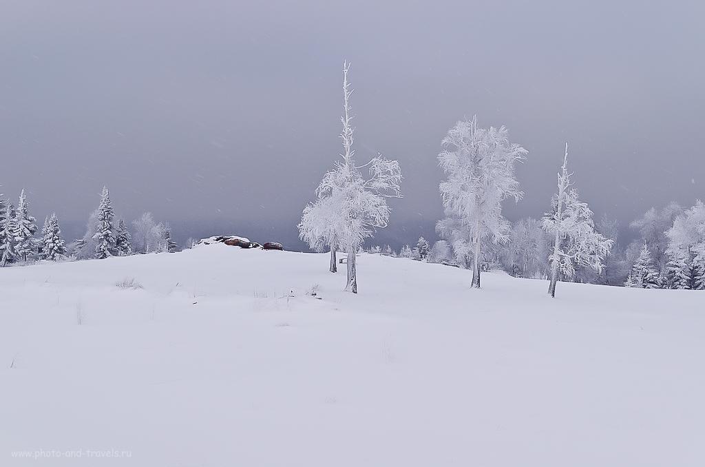 Фотография 8. Когда мы фотографируем зимой, нужно помнить о необходимости прибавить 0,3…0,7 EV (здесь в редакторе добавил 0.7EV). Разбираемся с правильной настройкой экспозиции при съемке на снегу. Фотоаппарат Никон Д5100, объектив Никон 17-55/2,8.