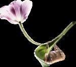 Yoka-Flowers-with-Handbag-230308.png