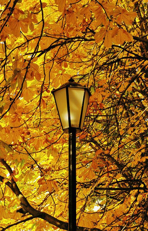 """Осень в сквере """"Весна"""""""