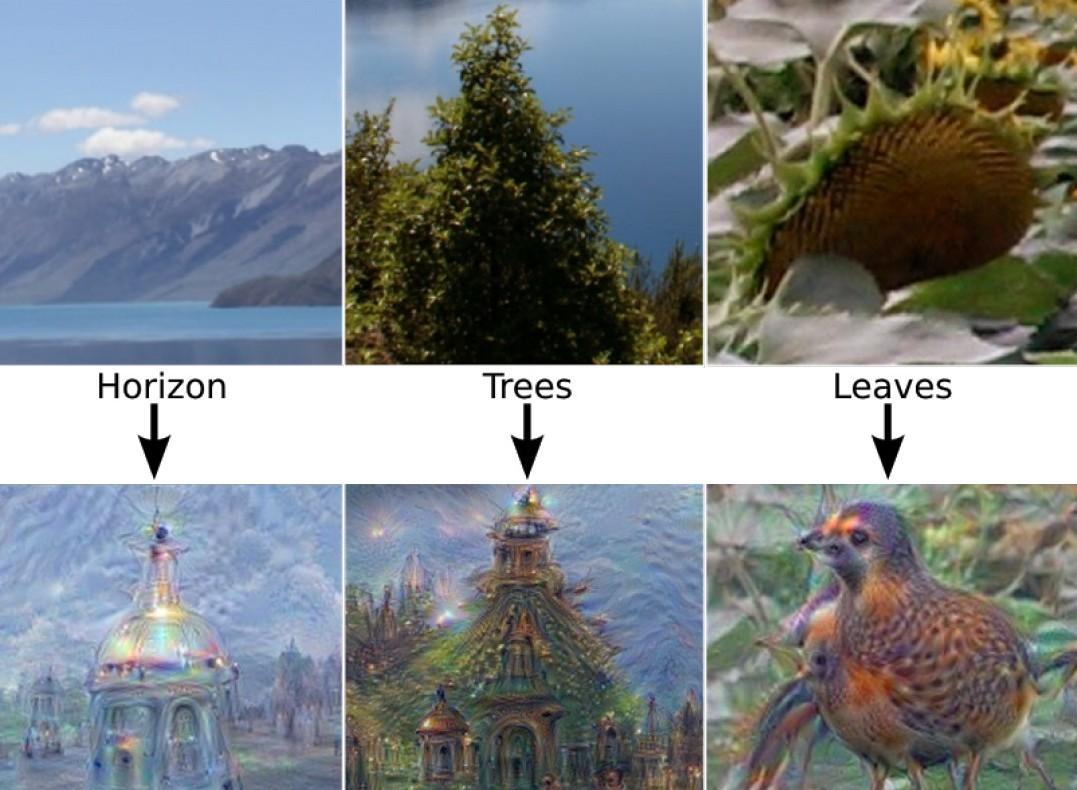 В ходе других испытаний сотрудники Google сказали сети ИИ производить случайные изображения без