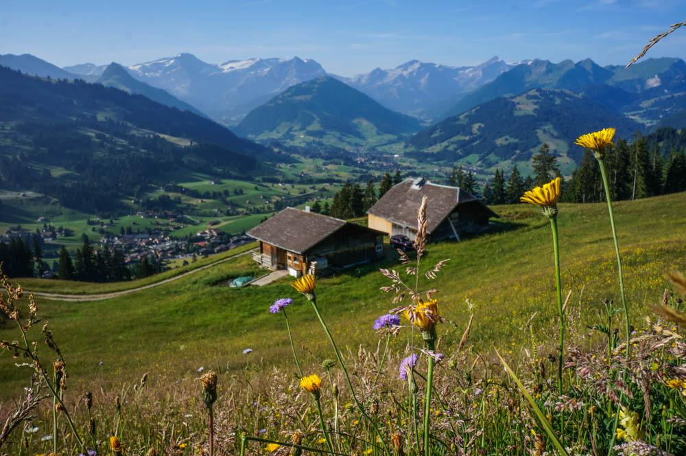 0 a6129 c8cbfd1e orig Гранд тур по Швейцарии. Красоты горного края...