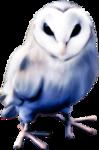 Owl-GI_DarknessSparkles.png