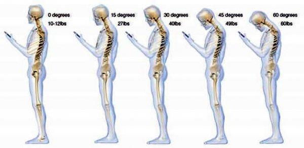 Интересные факты о нашем теле