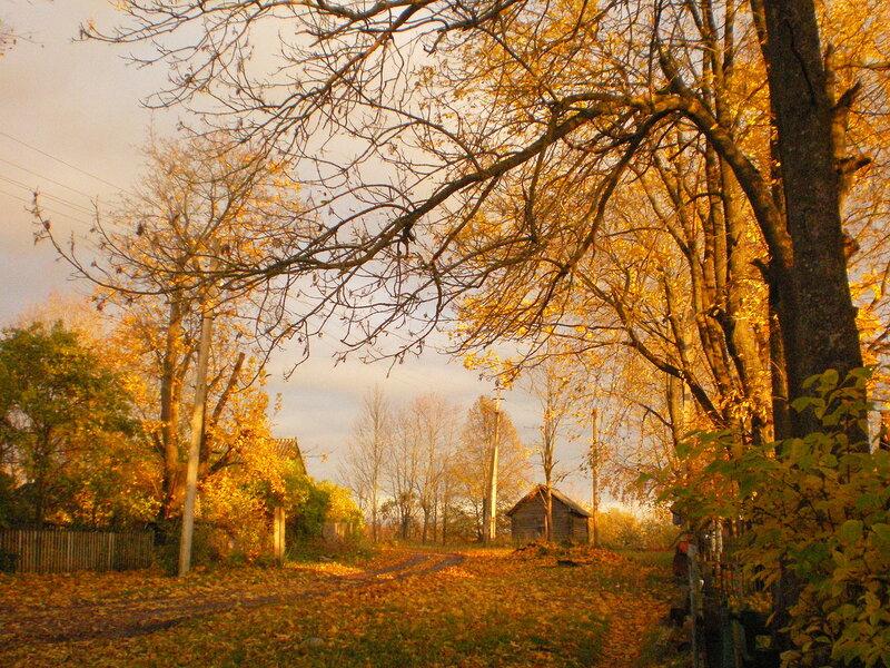 Клюкошицы. Осенний вид на житницу.