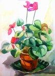 Рисунок натюрморта с комнатным растением