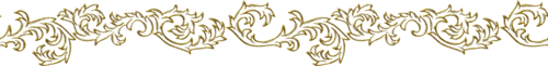 Gold Borders (05).png