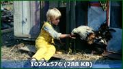 http//img-fotki.yandex.ru/get/3208/170664692.159/0_187a92_655c299f_orig.png