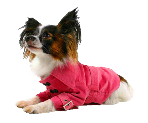 pink_lady_coat.png