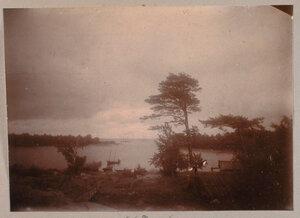 Вид местности у залива в окрестностях имения Монрепо.