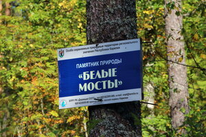 https://img-fotki.yandex.ru/get/3208/49622724.e/0_b96f3_3b3a5640_M.jpg