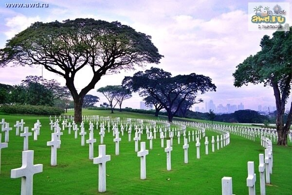 Николаевна сон про кладбище что значит термобелье наоборот отводит