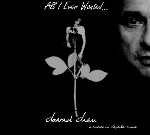 Depeche Mode - All i Ever Wanted (2009)