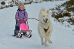 Huskies And Dog Sledders Train Ahead Of The GB Aviemore Sled Dog Rally This Weekend