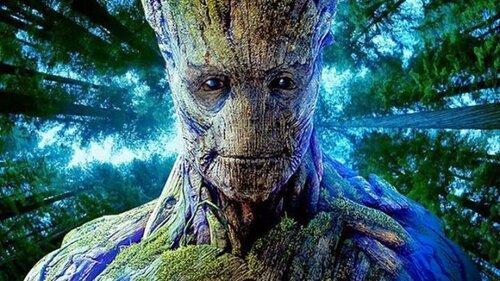 10 странных вещей, которые умеют делать деревья