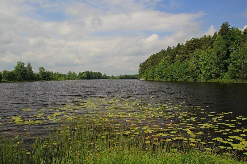 Чёрное озеро (Киров): облака, вода и листья кувшинок