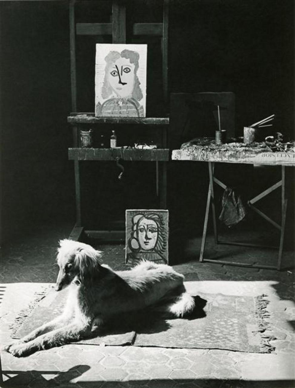 1944. Собака Кавказ