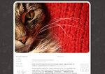 Дизайн для ЖЖ: Кошка на красном (S2). Дизайны для livejournal. Дизайны для Живого журнала. Оформление ЖЖ. Бесплатные стили. Авторские дизайны для ЖЖ
