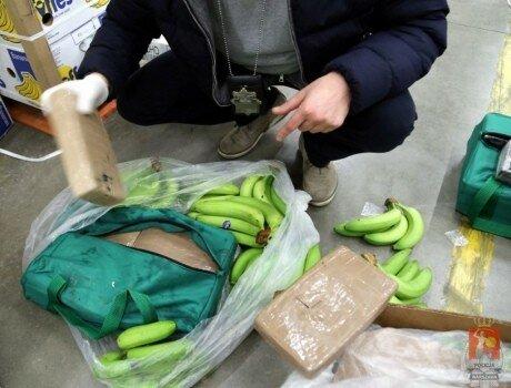 В Польше в грузовике с бананами нашли 178 кг кокаина