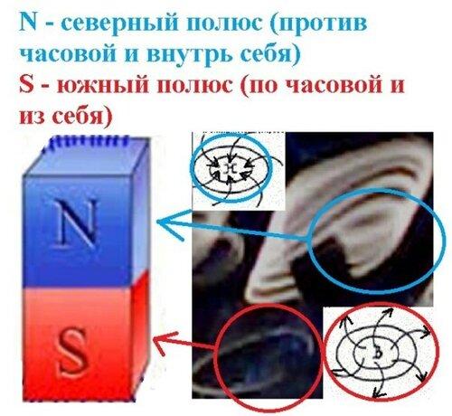 Новые картинки в мироздании 0_9944a_866fe7c7_L