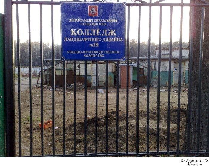 Колледжи ландшафтного дизайна в москве
