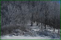 http://img-fotki.yandex.ru/get/3212/15842935.267/0_dfbc1_3a43d808_orig.png
