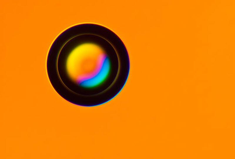Конкурс Nikon Small World 2010 (18 фото)