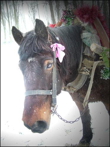 Крестьянская лошадка.