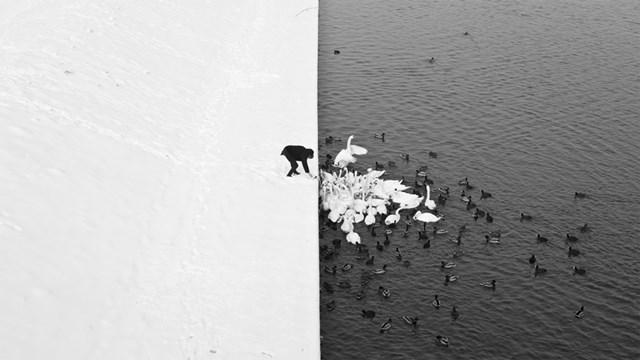 100 самых красивых зимних фотографии: пейзажи, звери и вообще 0 10f5c3 ca6be354 orig