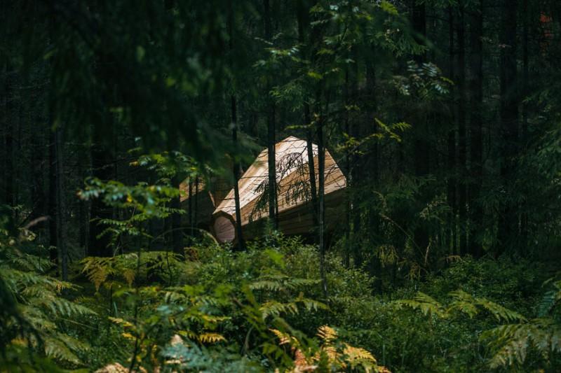 Эстонские студенты построили гигантские рупоры, чтобы слушать лес (12 фото)