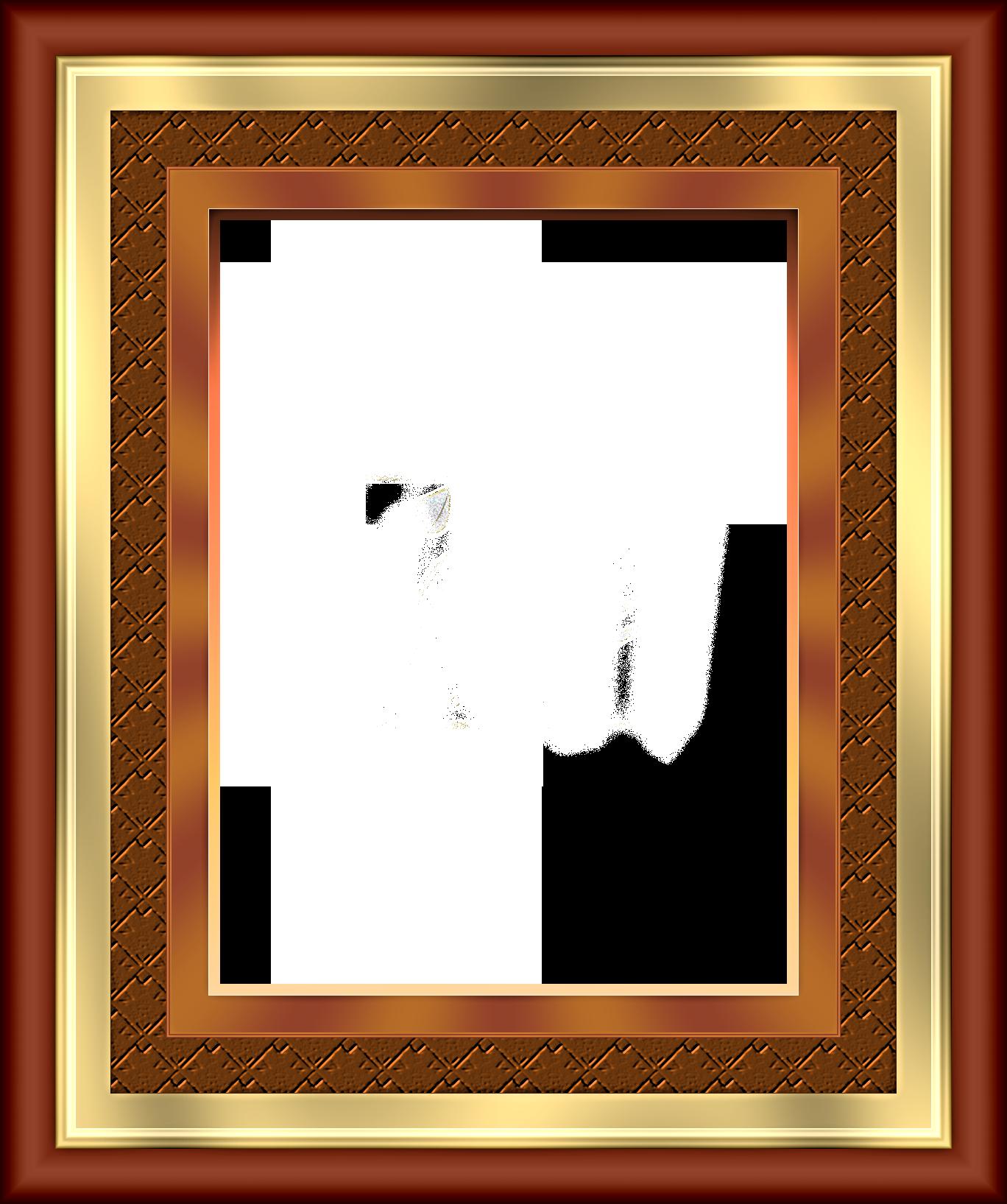 【边框相框素材篇】漂亮相框 第5辑 - 浪漫人生 - .
