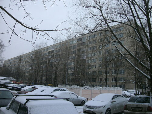 Пражская ул. 9к2
